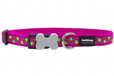 Red Dingo Dog collar hot pink with lime green stars
